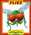 Flies - Tamara Green