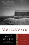 Mezzaterra: Fragments from the Common Ground - Ahdaf Soueif