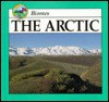The Arctic - Lynn M. Stone