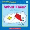 First Little Readers: What Flies? (Level B) - Liza Charlesworth