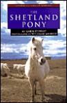 The Shetland Pony - Gail B. Stewart, William Muñoz
