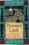 Promised Lands: A Novel of the Texas Rebellion - Elizabeth Crook