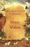 Many Waters (Madeleine L'Engle's Time Quintet) - Madeleine L'Engle