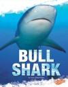 Bull Shark - Jody Sullivan Rake, Kelly Garvin