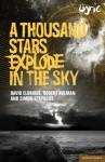 A Thousand Stars Explode in the Sky - David Eldridge, David Eldridge, Robert Holman