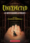 Unexpected: Eleven Mysterious Stories - Laura E. Williams