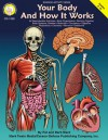 Your Body and How it Works, Grades 5 - 8 - Pat Ward, Barb Ward, Barbara Ward