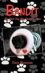 Bandit: Big Black Dog Who Stole My Heart - Carol Bradshaw
