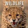 Wildlife of Southern Africa - Carol Polich