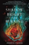 A Shadow Bright and Burning - Jessica Cluess