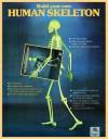 Human Skeleton - Taschen, Taschen