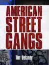 American Street Gangs - Tim Delaney