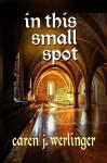 In This Small Spot - Caren J. Werlinger