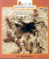 Inside an Ant Colony (Rookie Read-About Science) - Allan Fowler