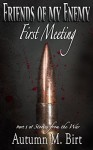 First Meeting: Part 1 of Stories from the War (Friends of my Enemy) - Autumn M. Birt