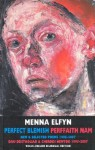 Perfect Blemish: New and Selected Poems, 1995-2007 - Menna Elfyn