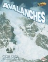 Avalanches - Michael Woods, Mary Woods