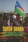 South Sudan: From Revolution to Independence - Matthew Arnold, Matthew Leriche