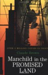 Manchild in the Promised Land - Claude Brown, BROWN CLAUDE