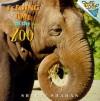 Feeding Time at the Zoo - Sherry Shahan