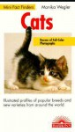 Cats: Illustrated Profiles of Popular Breeds and New Varieties from Around the World - Monika Wegler