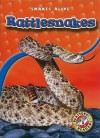 Rattlesnakes - Colleen Sexton