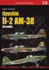 Ilyushin II-2 AM-38 (Topdrawings #13) - Maciej Noszczak