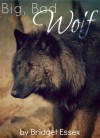 Big, Bad Wolf - Bridget Essex