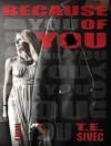 Because of You - Tara Sivec, Sean Crisden, Abby Craden
