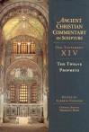 The Twelve Prophets - Alberto Ferreiro, Intervarsity Press