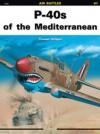 P-40s Of The Mediterranean - Tomasz Szlagor