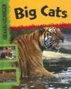 Big Cats - Lynn Huggins-Cooper