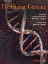 The Human Genome - Carina Dennis
