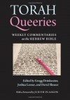Torah Queeries - Lesser Joshua, Gregg Drinkwater, Joshua Lesser, David Shneer, Judith Plaskow