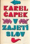 V zajetí slov - Karel Čapek