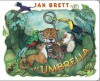 The Umbrella: board book (Board Book) - Jan Brett