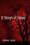 It Sleeps at Dawn - Anthony Renfro