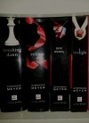 Twilight / New Moon / Eclipse / Breaking Dawn - Stephanie Meyer