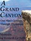 A Grand Canyon: One Man's Journey Through Depression - Ken La Salle