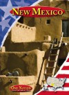 New Mexico (One Nation) - Patricia K. Kummer