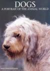 Dogs: A Portrait of the Animal World - Marcus H. Schneck, Jill Caravan