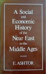 A Social and Economic History of the Near East in the Middle Ages - Eliyahu Ashtor