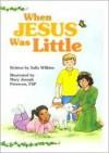 When Jesus Was Little - Sally Wilkins
