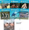 Zoo Animals -Lib 6v - Carey Molter