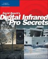 David Busch's Digital Infrared Pro Secrets, 1st Edition - David D. Busch