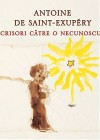 Scrisori către o necunoscută - Antoine de Saint-Exupéry