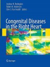 Congenital Diseases in the Right Heart - Andrew N. Redington, Robert H. Anderson