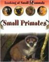 Small Primates (Morgan, Sally. Looking At Small Mammals.) - Sally Morgan