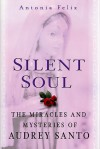 Silent Soul: The Miracles And Mysteries Of Audrey Santo - Antonia Felix