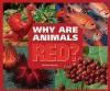 Why Are Animals Red? - Melissa Stewart